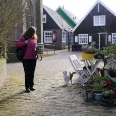 The cats of Marken