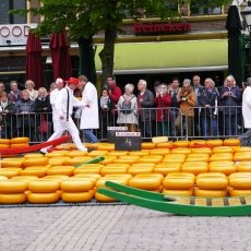 Alkmaar Cheese Market 03