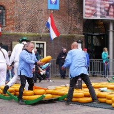 Alkmaar Cheese Market 11