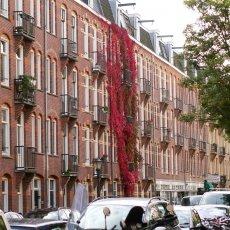 Amsterdam West 01