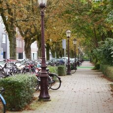 Amsterdam West 04