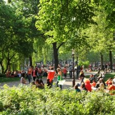 Queen\'s Day party in the park
