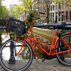 Autumn bike
