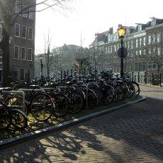 Bikes in the sun