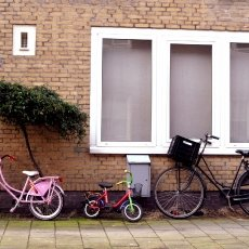 Bicycles family