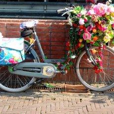Spring on a bike