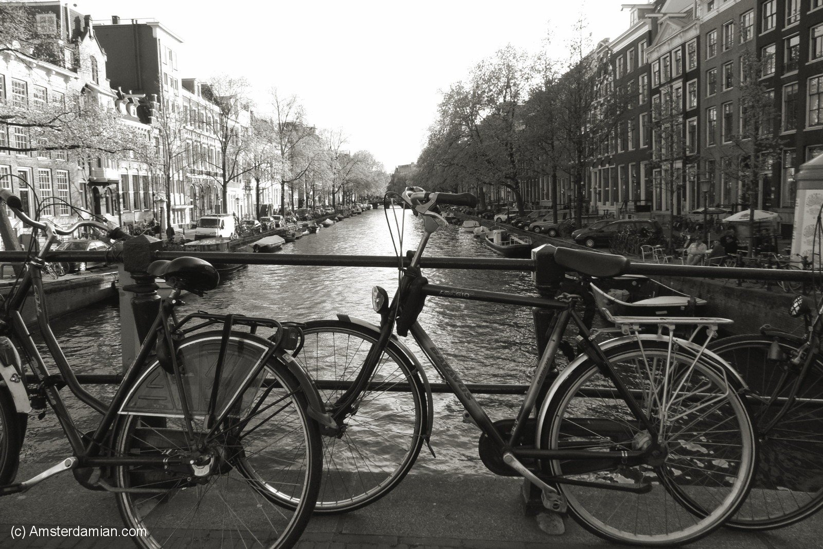 Amsterdam in Black and White   Amsterdamian