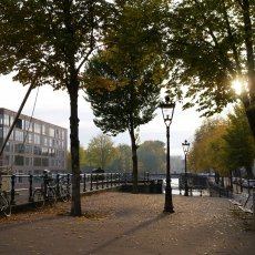 Rapenburgerplein in the autumn light