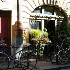 Flower shop and bikes