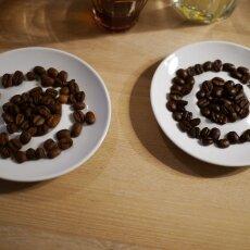 Coffee Tasting - Jones Brothers 23