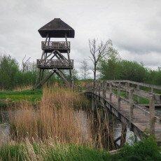 De Alde Feanen National Park 17