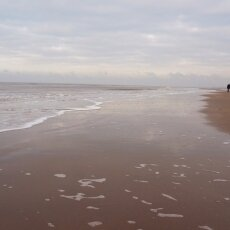 December at the beach 03