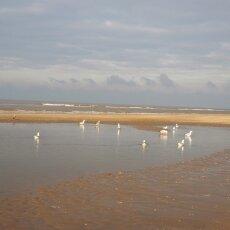 December at the beach 06