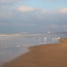 December at the beach 19