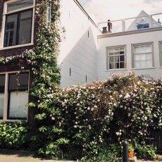 Dordrecht harbour 03