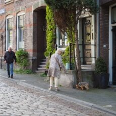 Dordrecht - old city centre 23