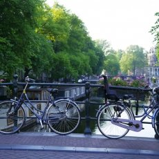 Bikes and flowers on a bridge