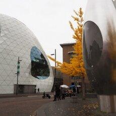 Eindhoven day-trip 05