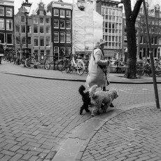 Amsterdam city centre empty 14