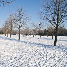 Frankendael park