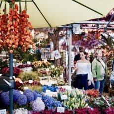 Flower Market Amsterdam 09