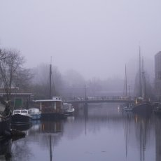 Foggy day on Westelijke Eilanden 03