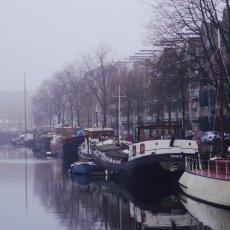 Foggy day on Westelijke Eilanden 05