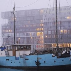 Foggy day on Westelijke Eilanden 09