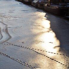 Frozen Canals Amsterdam 22