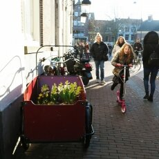 Haarlem in February 02