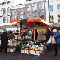 Haarlem in February 05