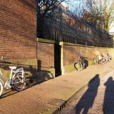 Haarlem in February 13