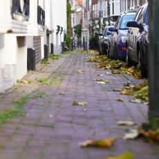 Haarlem in October 17