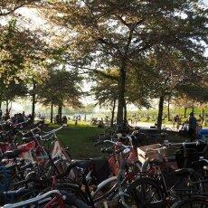 Westerpark 07