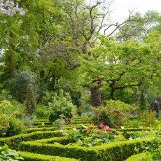 Hortus Botanicus 03