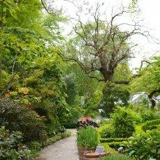 Hortus Botanicus 06