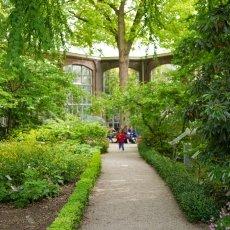 Hortus Botanicus 08