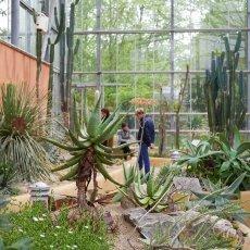 Hortus Botanicus 16