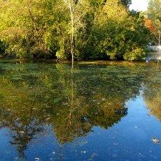 Vondelpark lake