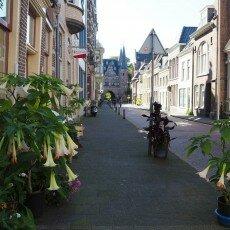 Hanseatic cities: Kampen 13