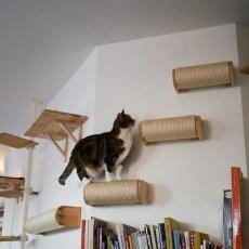 Kattencafé Kopjes 14