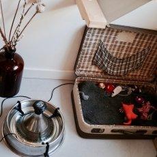 Kattencafé Kopjes 17