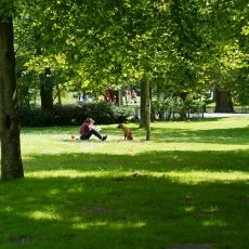 Chilling in the park