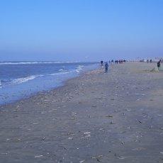 Zandvoort 08