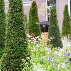 Merkelbach garden 09