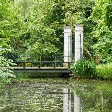 Merkelbach garden 11