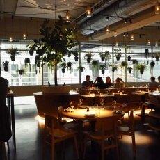 NENI restaurant 19