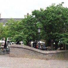Day-trip to Nijmegen 13
