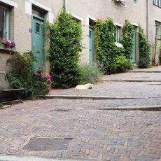 Day-trip to Nijmegen 21