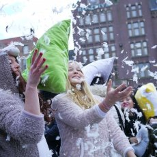 Pillow Fight 2015 15
